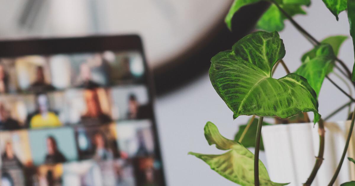 Sustainable Digital Marketing